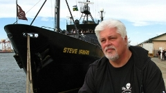 Paul Watson and the MY Steve Irwin