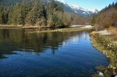McNab Creek, which flows into Howe Sound 22 kilometres southwest of Squamish, is the site of a gravel mining proposal from Calgary-based Burnco Rock Products Ltd.