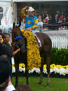 """""""American Pharoah"""" by Maryland GovPics - 2015 Preakness Stakes. Licensed under CC BY 2.0 via Wikimedia Commons - https://commons.wikimedia.org/wiki/File:American_Pharoah.jpg#/media/File:American_Pharoah.jpg"""